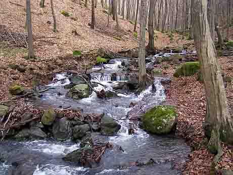 Mátrában patak a Mátrafüred oldalon.