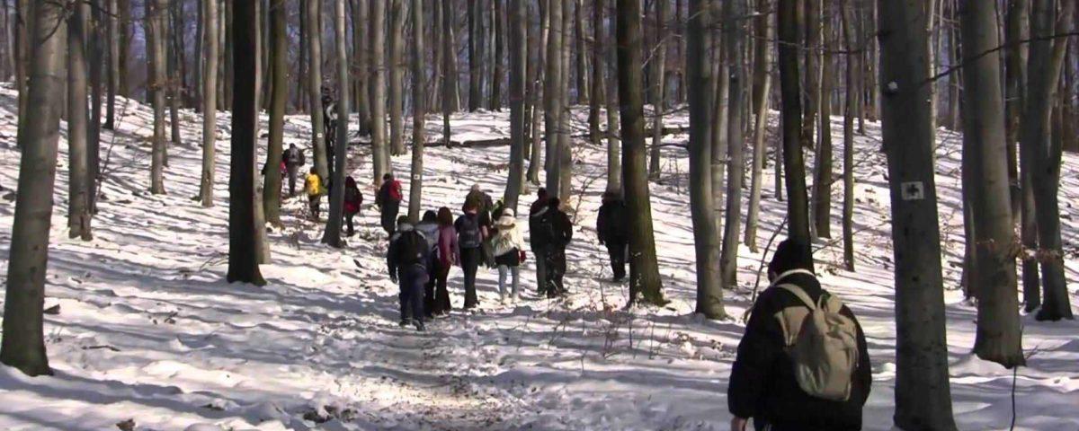 Téli Mátra Teljesítménytúra esemény a Mátrafüred oldalán.